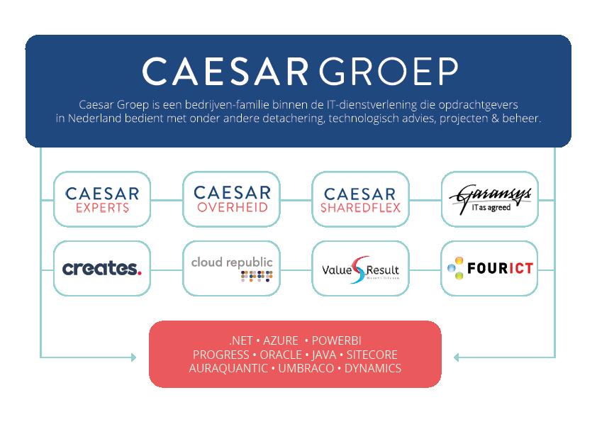 CaesarGroep_Organogram_9